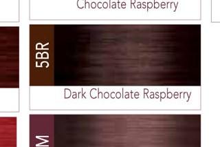 Iso I Color Dark Chocolate Raspberry 5br 5 86 Permanent