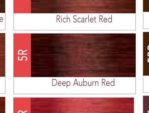 ISO I.Color Deep Auburn Red 5R (5.5) Permanent Hair Color Creme 2oz (3 pack)