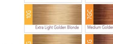ISO I.Color Extra Light Golden Blonde 10G (10.3) Permanent Hair Color Creme 2oz (3 pack)