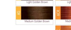 ISO I.Color Medium Golden Brown 4G (4.3) Permanent Hair Color Creme 2oz (3 pack)